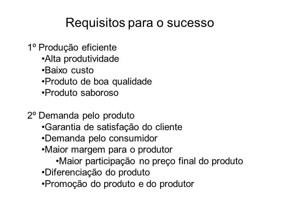Requisitos para o sucesso