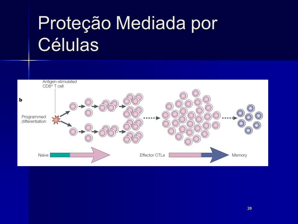 Proteção Mediada por Células