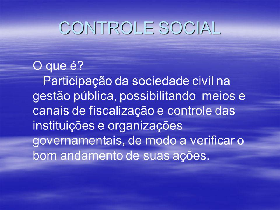 CONTROLE SOCIAL O que é