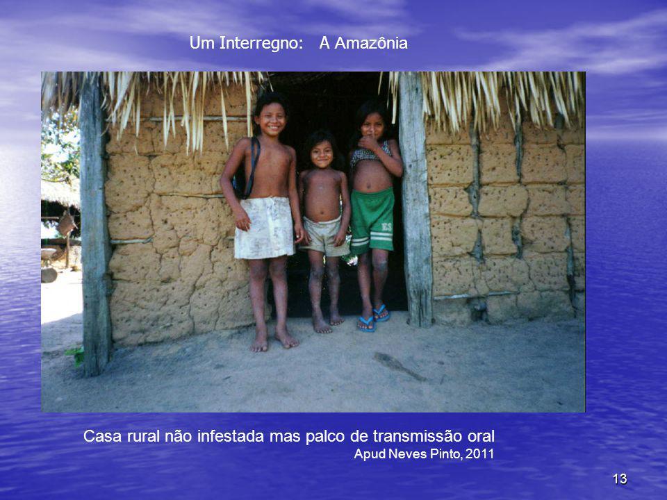 Um Interregno: A Amazônia