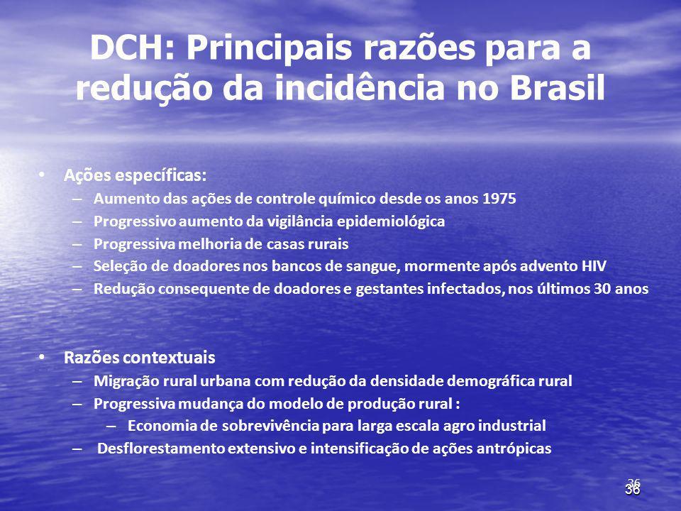 DCH: Principais razões para a redução da incidência no Brasil