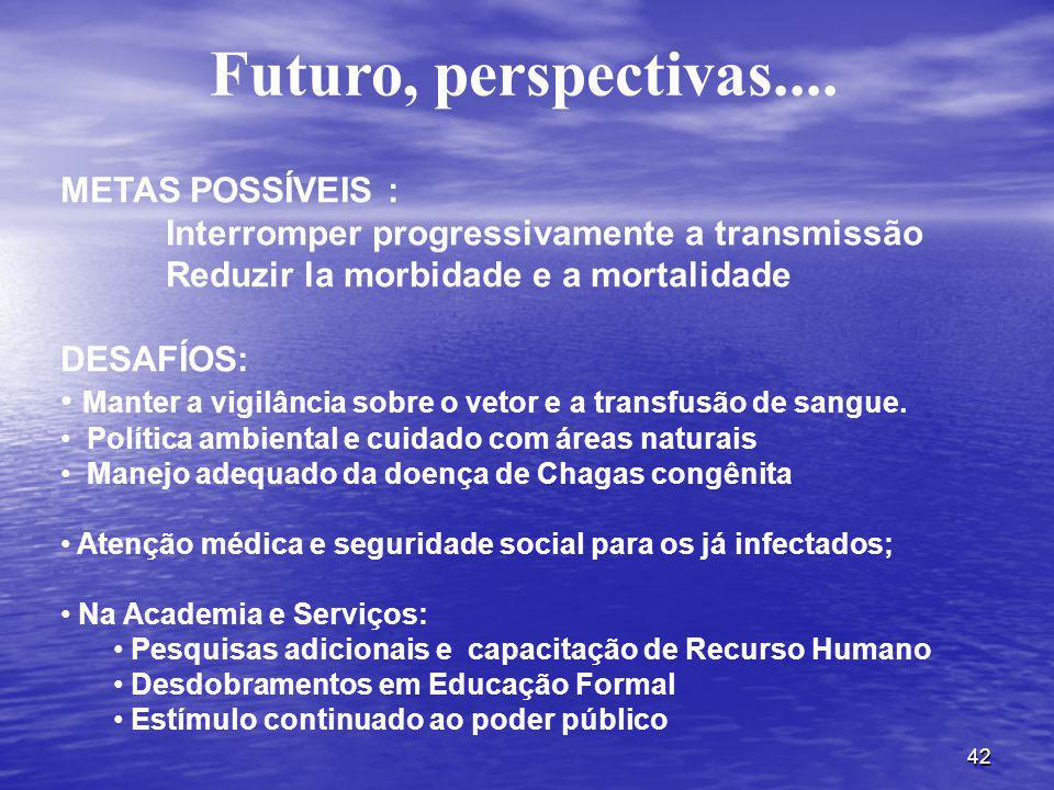 Futuro, perspectivas.... METAS POSSÍVEIS :