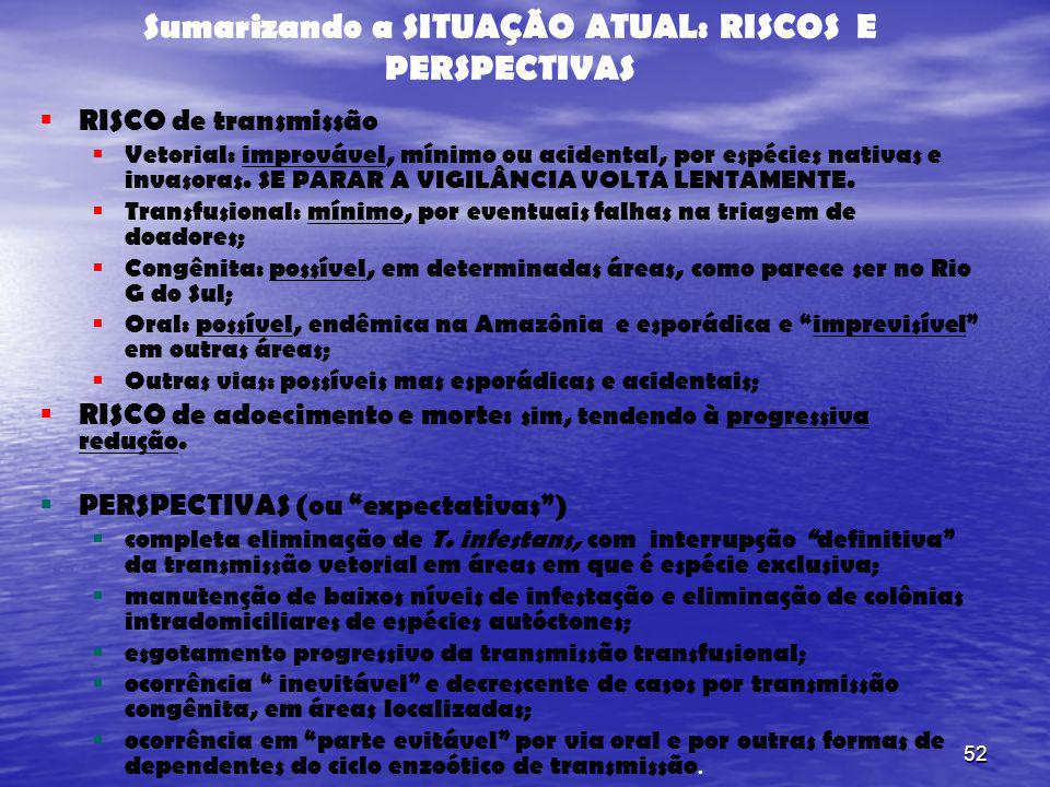 Sumarizando a SITUAÇÃO ATUAL: RISCOS E PERSPECTIVAS