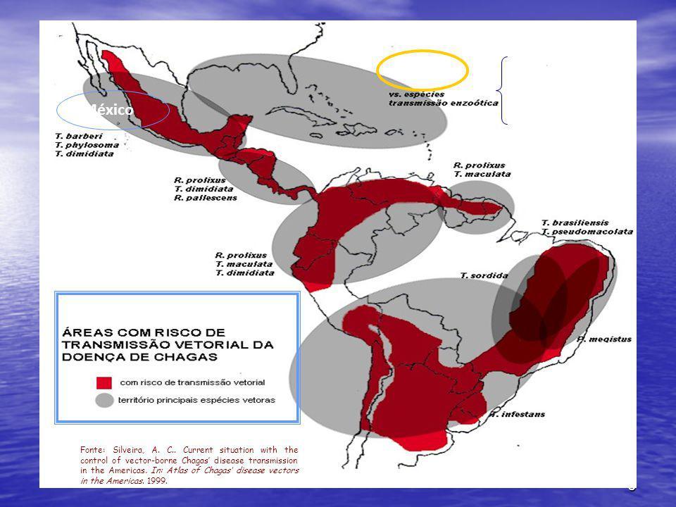 México INCOSUL CARIBE CENTROAMERICANOS ANDINOS Bolbodera scabrosa