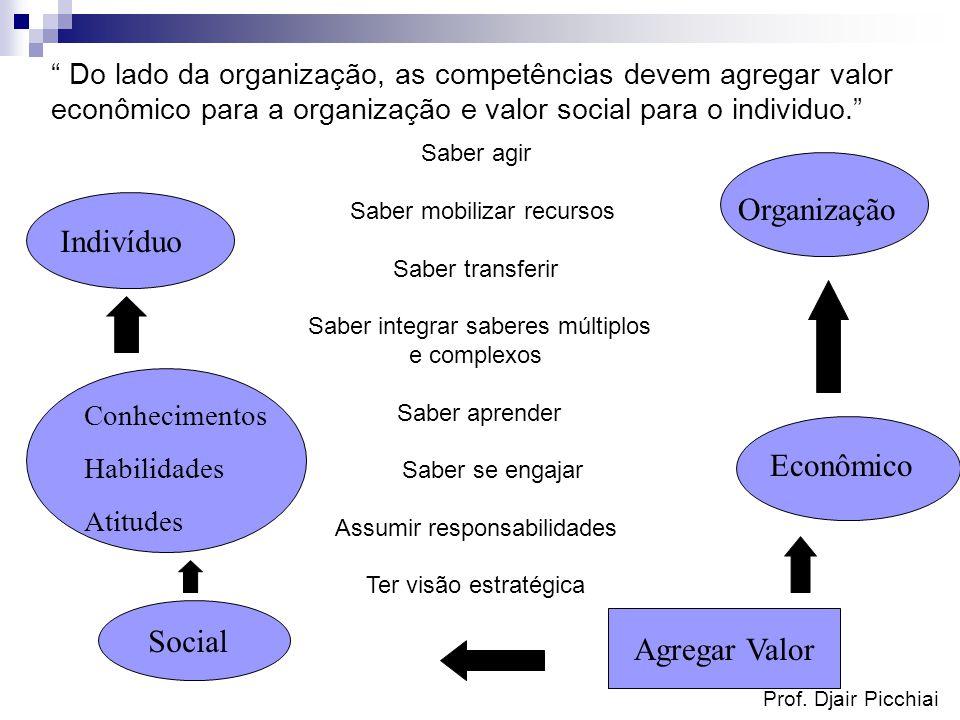 Organização Indivíduo Econômico Social Agregar Valor