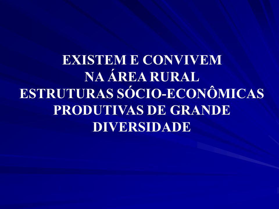 ESTRUTURAS SÓCIO-ECONÔMICAS PRODUTIVAS DE GRANDE DIVERSIDADE
