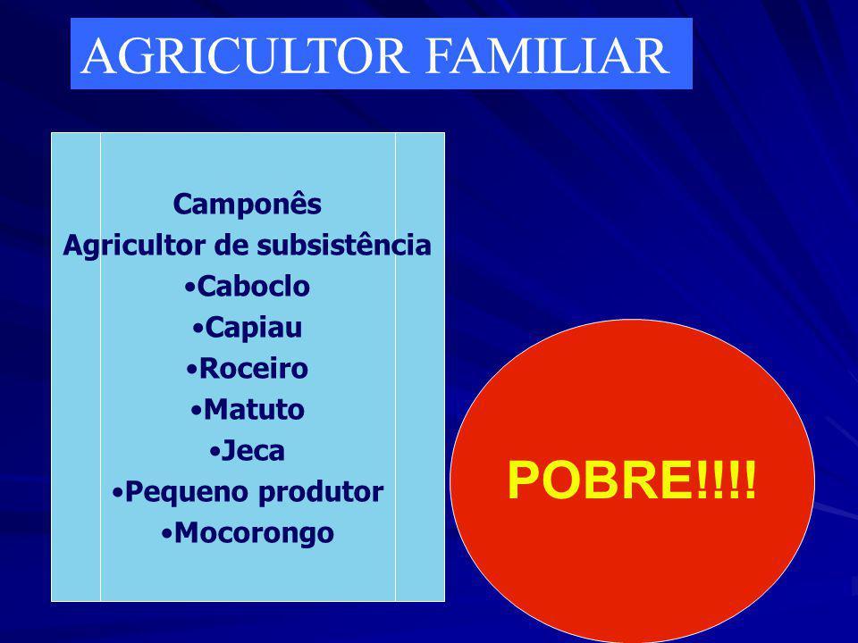 Agricultor de subsistência