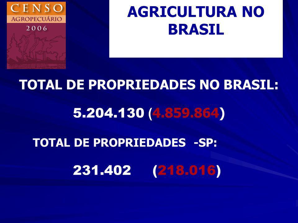 TOTAL DE PROPRIEDADES NO BRASIL: