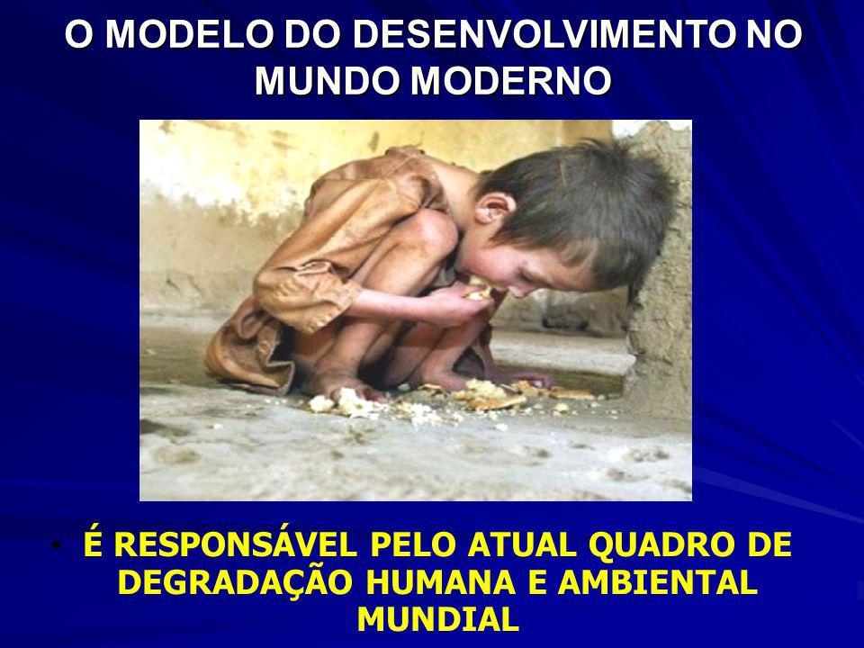 O MODELO DO DESENVOLVIMENTO NO MUNDO MODERNO