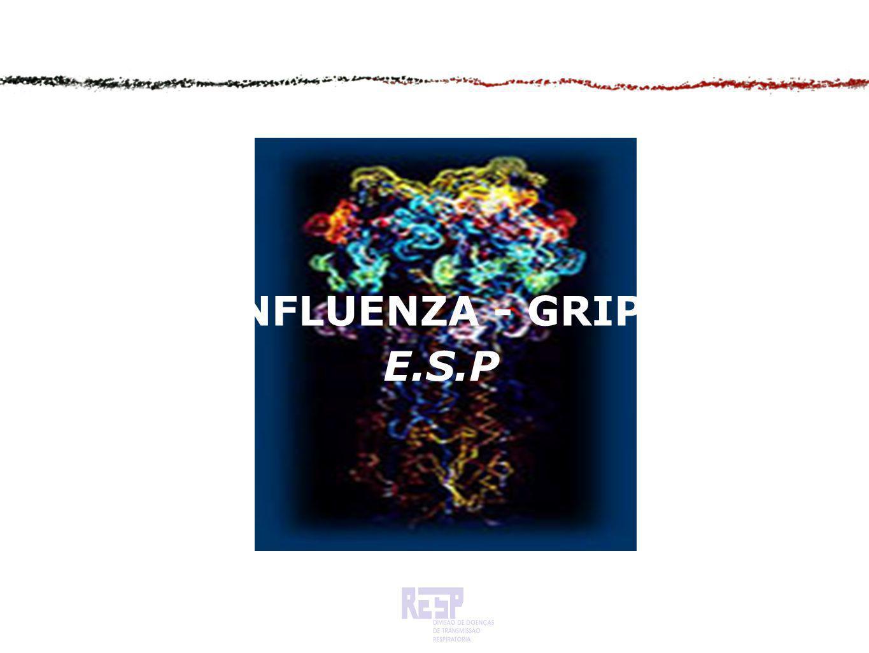 INFLUENZA - GRIPE E.S.P