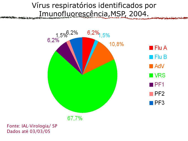 Vírus respiratórios identificados por Imunofluorescência,MSP, 2004.