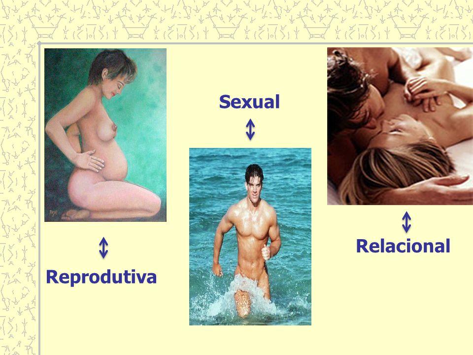 Sexual Relacional Reprodutiva