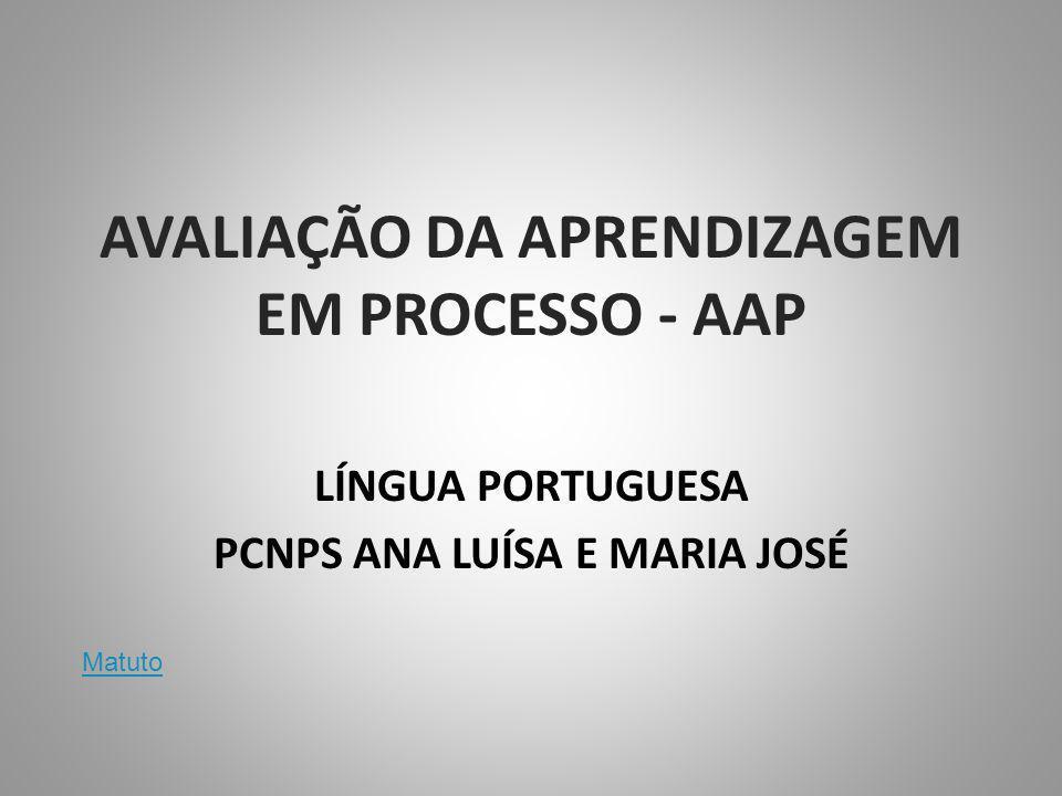 AVALIAÇÃO DA APRENDIZAGEM EM PROCESSO - AAP