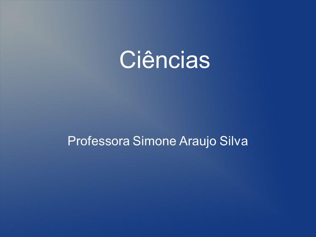 Professora Simone Araujo Silva