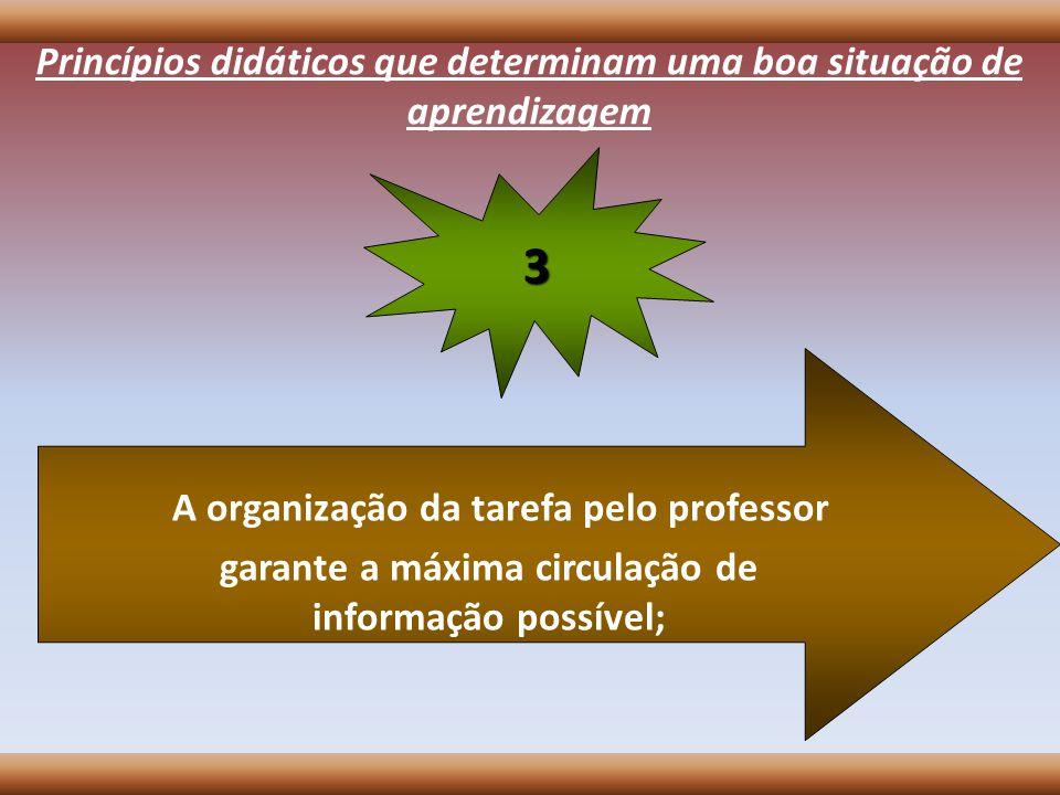 A organização da tarefa pelo professor