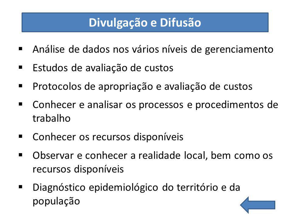 Divulgação e Difusão Análise de dados nos vários níveis de gerenciamento. Estudos de avaliação de custos.