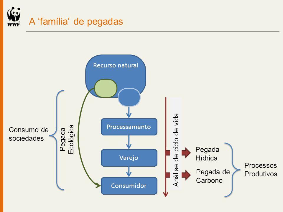 A 'família' de pegadas Recurso natural Processamento