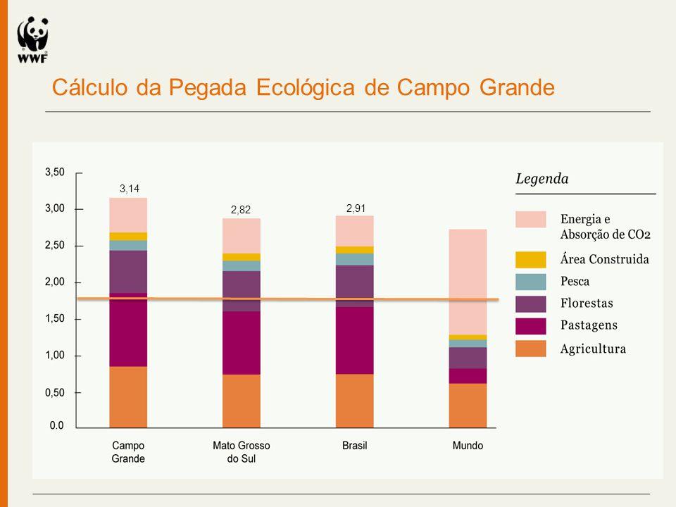Cálculo da Pegada Ecológica de Campo Grande