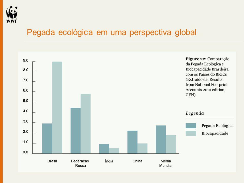 Pegada ecológica em uma perspectiva global