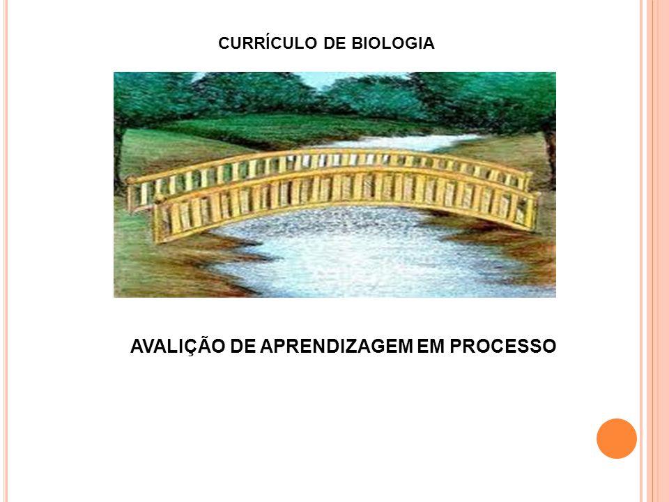 AVALIÇÃO DE APRENDIZAGEM EM PROCESSO