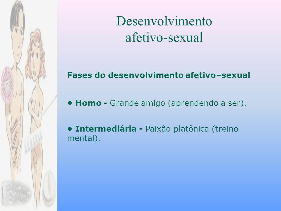 Desenvolvimento afetivo-sexual Fases do desenvolvimento afetivo–sexual