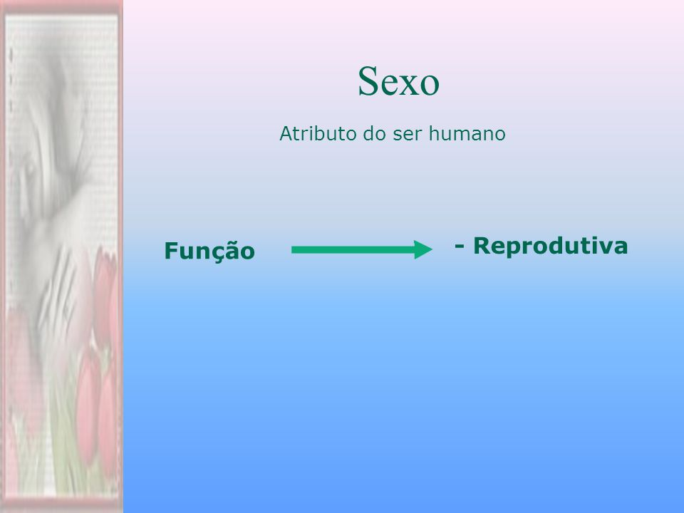 Sexo Atributo do ser humano - Reprodutiva Função