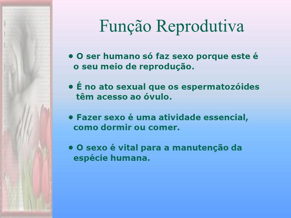 Função Reprodutiva • O ser humano só faz sexo porque este é
