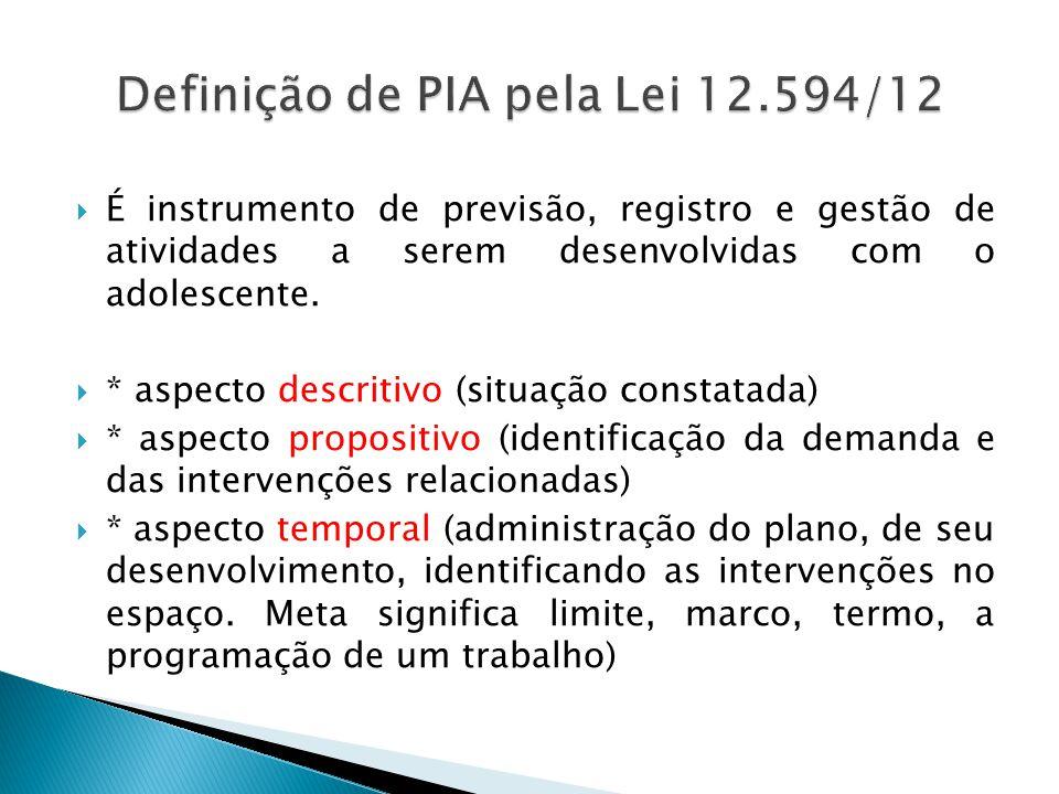 Definição de PIA pela Lei 12.594/12