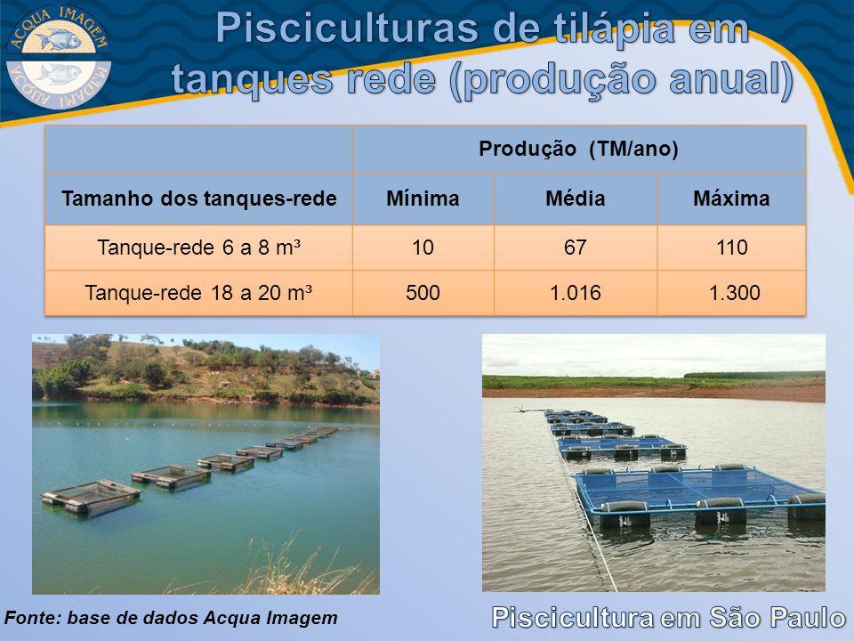 Pisciculturas de tilápia em tanques rede (produção anual)