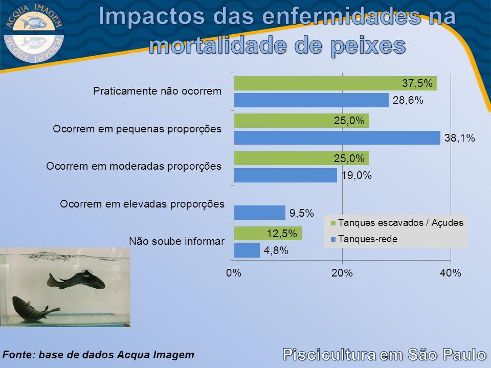 Impactos das enfermidades na mortalidade de peixes