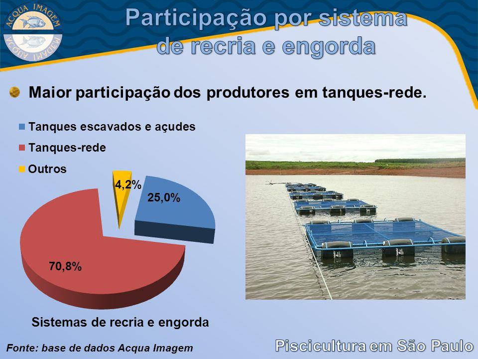 Participação por sistema