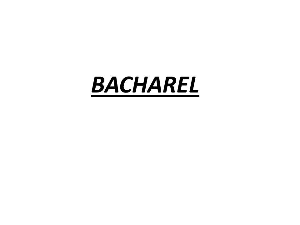 BACHAREL