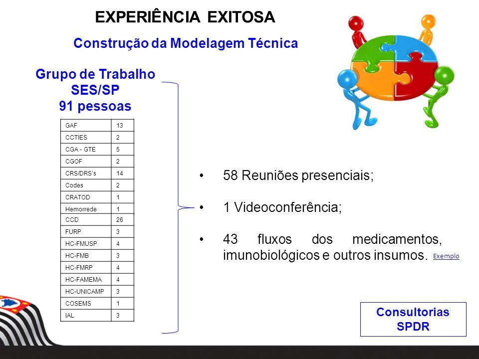 EXPERIÊNCIA EXITOSA Construção da Modelagem Técnica Grupo de Trabalho