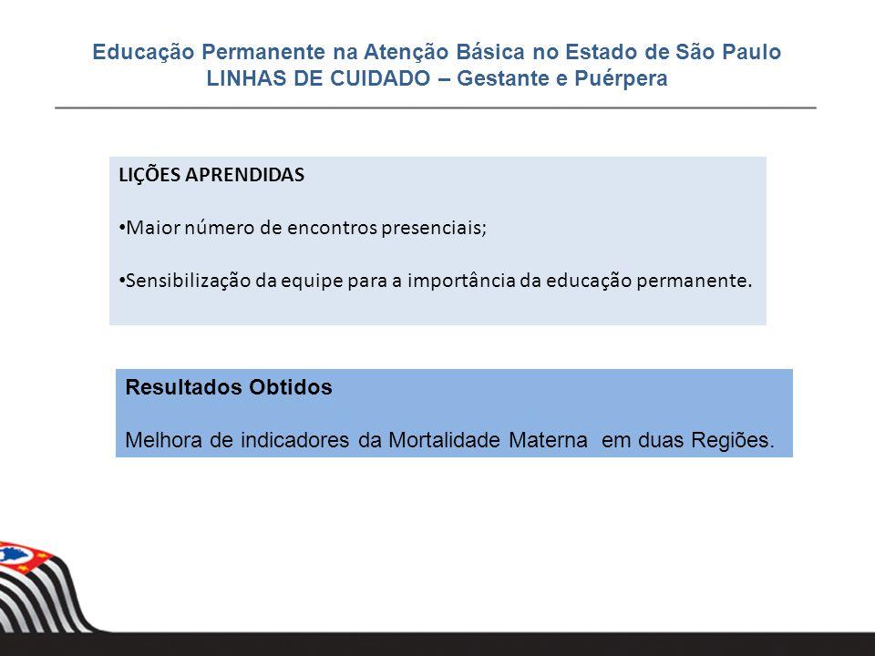 Educação Permanente na Atenção Básica no Estado de São Paulo