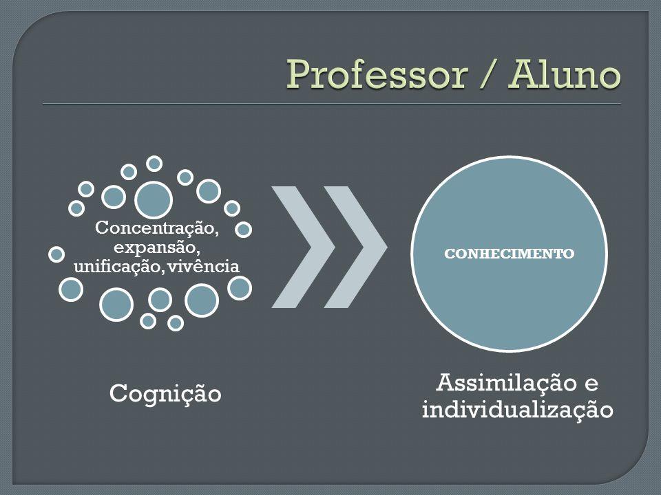 Professor / Aluno Assimilação e individualização Cognição