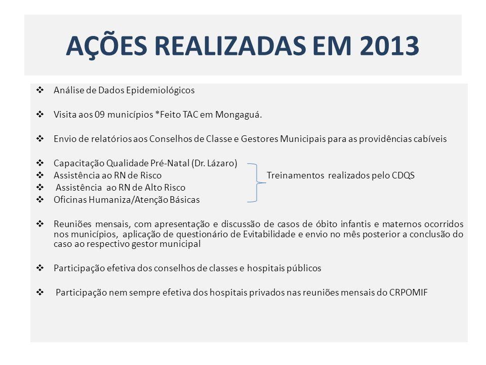 AÇÕES REALIZADAS EM 2013 Análise de Dados Epidemiológicos