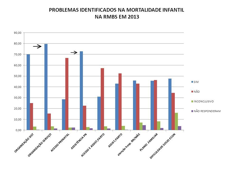 PROBLEMAS IDENTIFICADOS NA MORTALIDADE INFANTIL