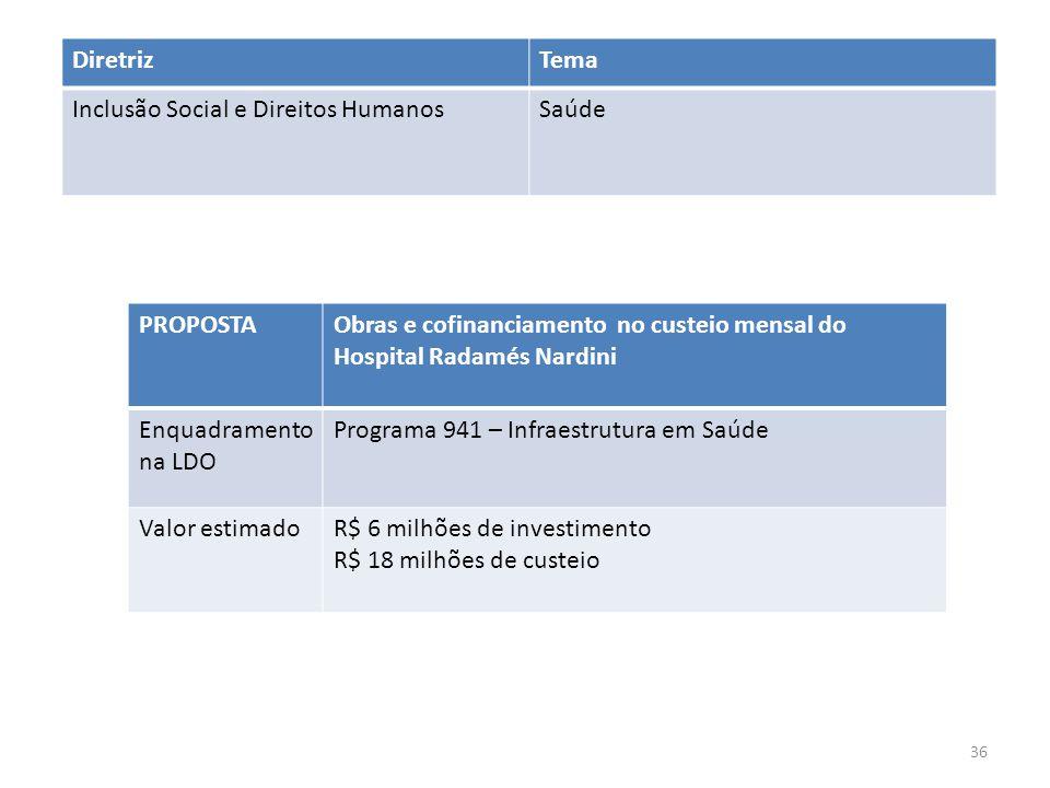 Diretriz Tema. Inclusão Social e Direitos Humanos. Saúde. PROPOSTA. Obras e cofinanciamento no custeio mensal do Hospital Radamés Nardini.