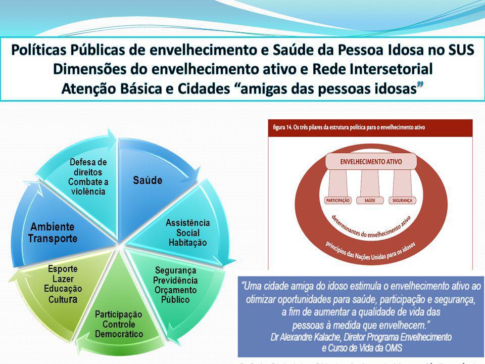 Políticas Públicas de envelhecimento e Saúde da Pessoa Idosa no SUS