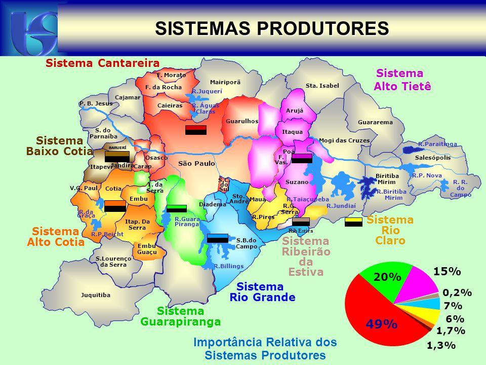 SISTEMAS PRODUTORES 49% Importância Relativa dos Sistemas Produtores
