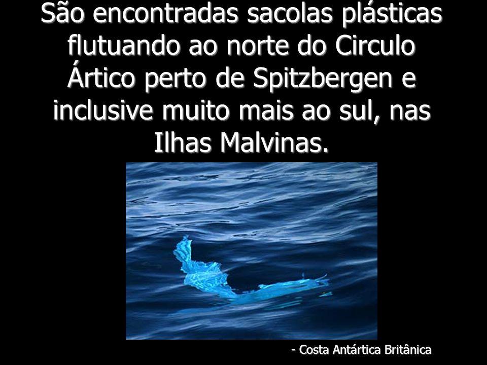 - Costa Antártica Britânica