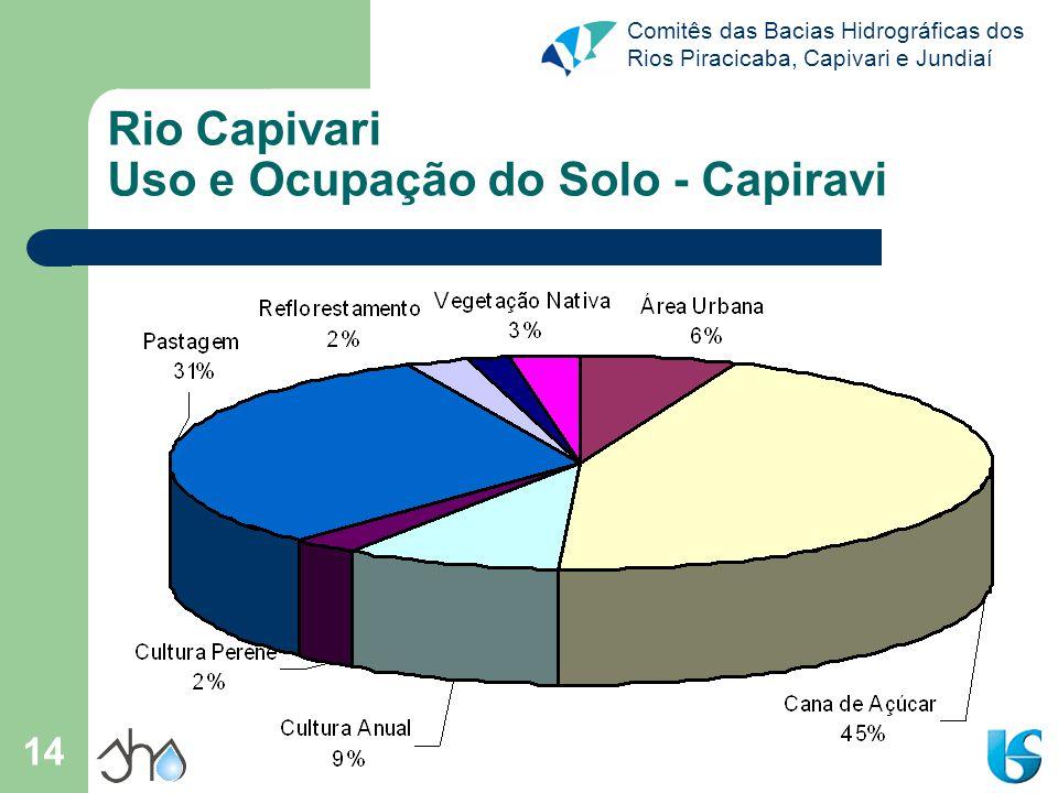 Rio Capivari Uso e Ocupação do Solo - Capiravi
