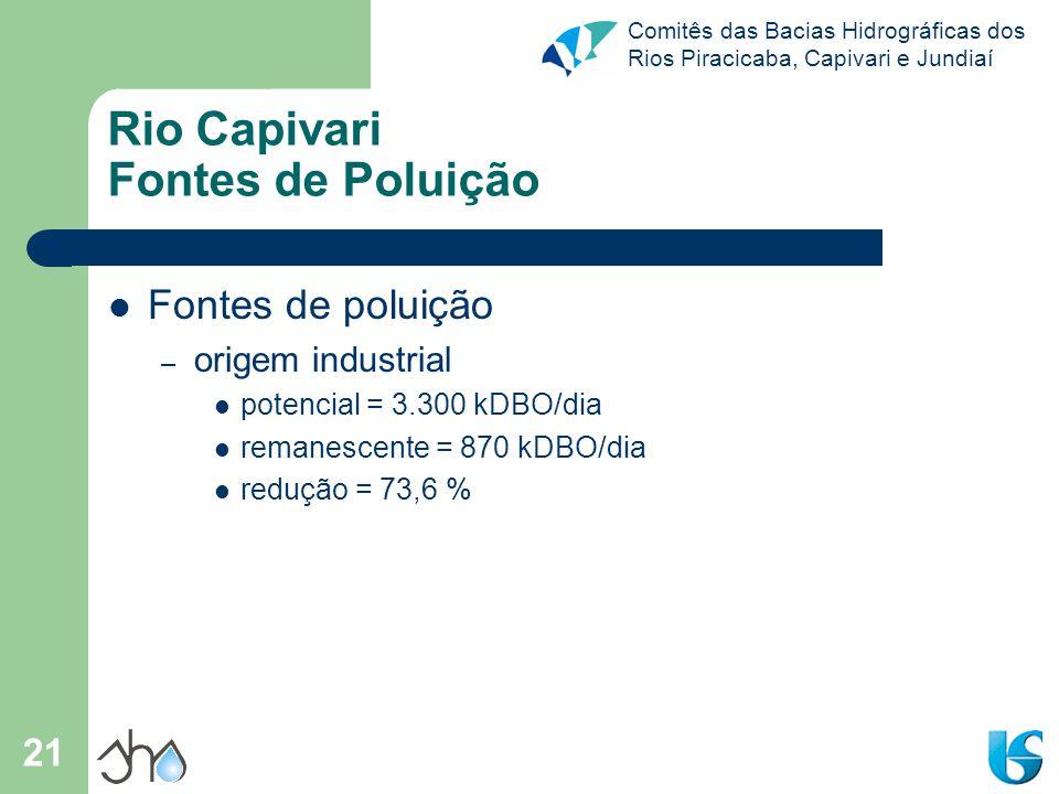 Rio Capivari Fontes de Poluição