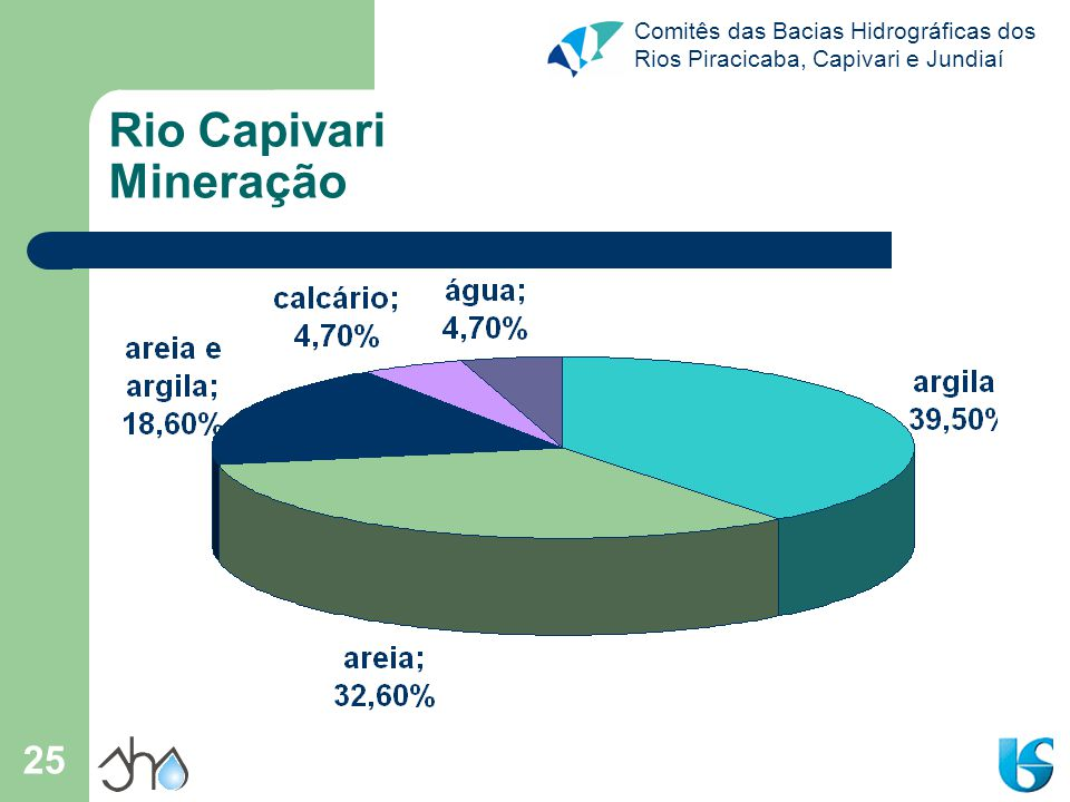 Rio Capivari Mineração