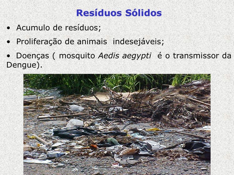 Resíduos Sólidos Acumulo de resíduos;