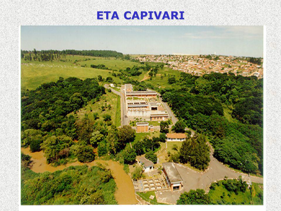 ETA CAPIVARI