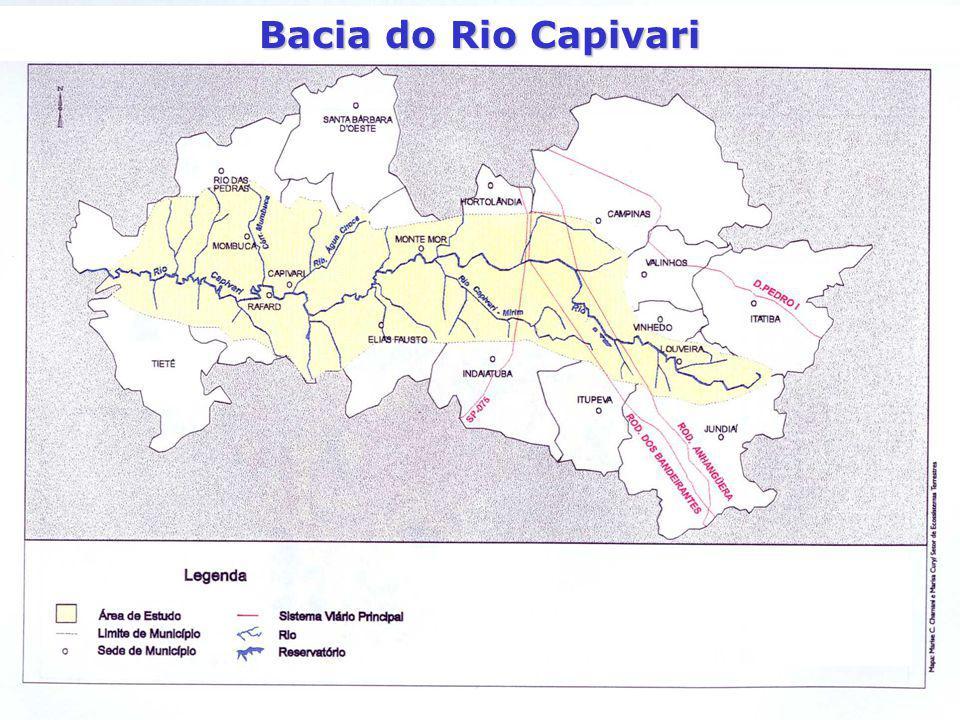 Bacia do Rio Capivari