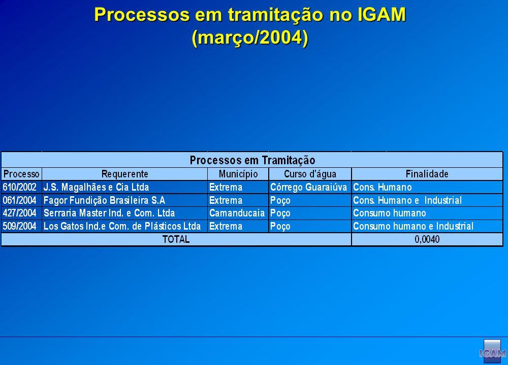 Processos em tramitação no IGAM