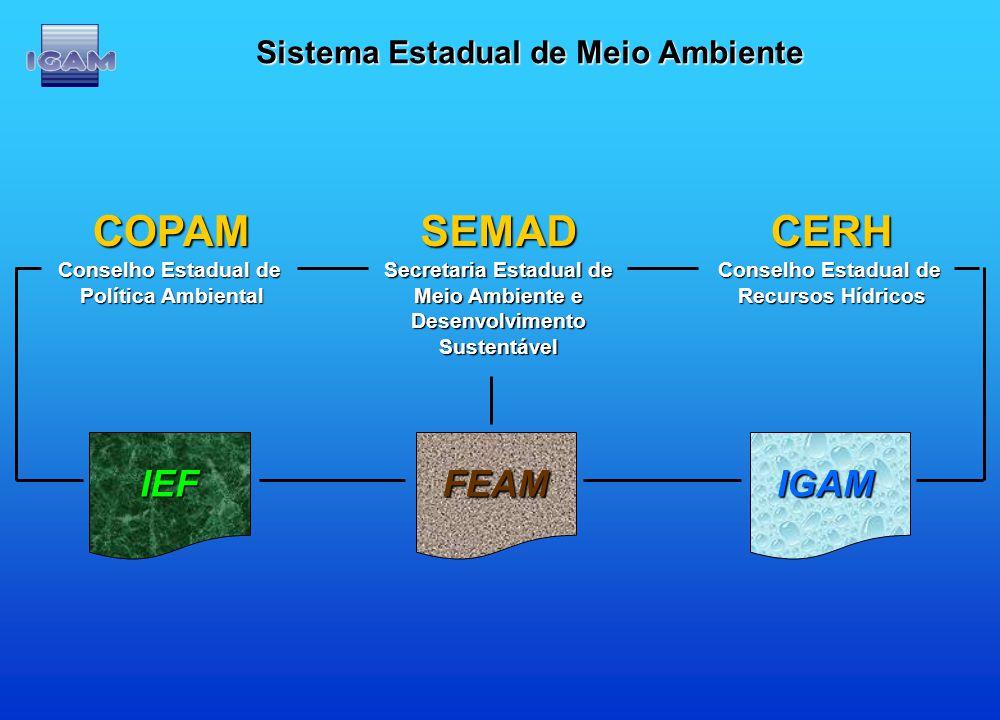 Sistema Estadual de Meio Ambiente Secretaria Estadual de