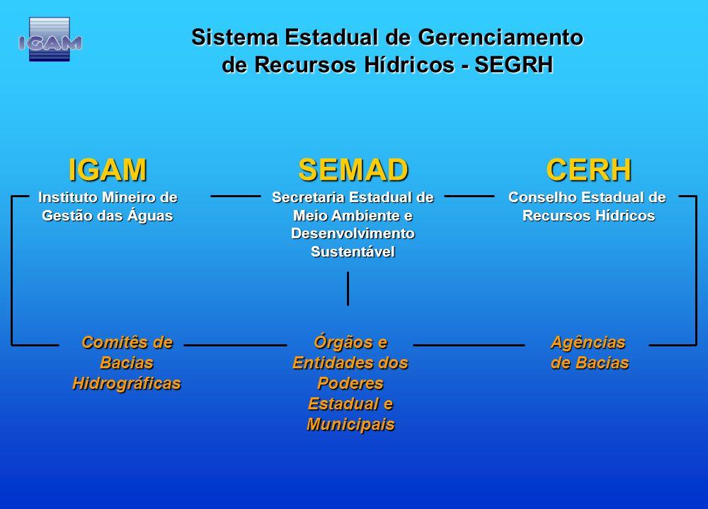 IGAM SEMAD CERH Sistema Estadual de Gerenciamento